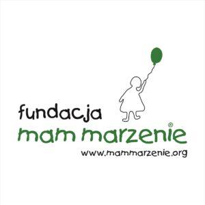 logoFMM2007